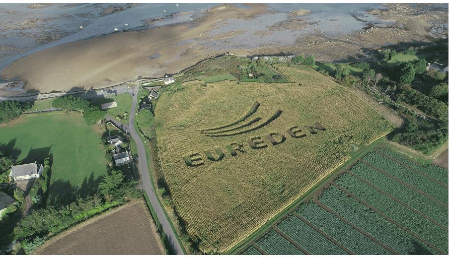 La casserie d'œufs du groupe Eureden investit dans une nouvelle ligne de production - Industrie online