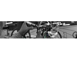 Business is booming at the bicycle factory in Machecoul - Industrie online